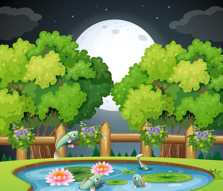 Fish in the pond at nighttime illustration Illustration