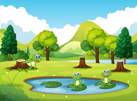 Park scene met drie kikkers in de vijver illustratie