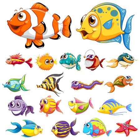 Différents types de poissons illustration Banque d'images - 82339017