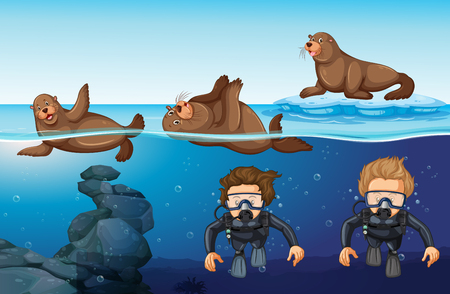Divers and seals in the sea illustration
