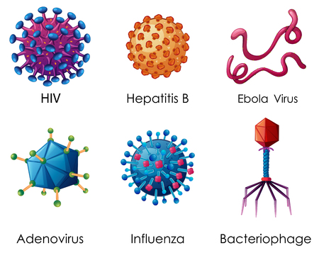 Six types of viruses on white background illustration