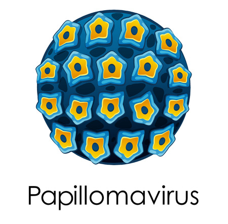 virus bacteria: Diagram showing papilomavirus on white background illustration Illustration