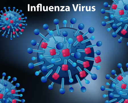 virus bacteria: Close up diagram for Influenza virus illustration