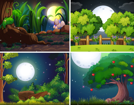 Four night scenes of the forest and park illustration Illustration