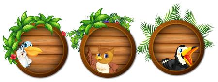 Three wooden boards with wild birds illustration.
