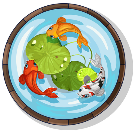 Three kois swimming in small pool illustration