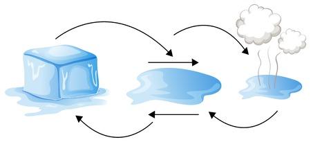diagramme montrant le statut différent de l & # 39 ; eau illustration