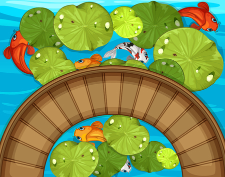 Top view of fish and waterlily in the pond illustration