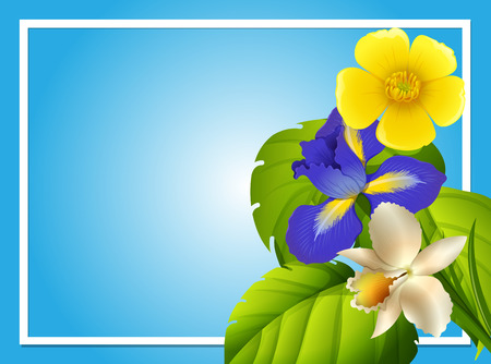 Border template with colorful flowers in garden illustration