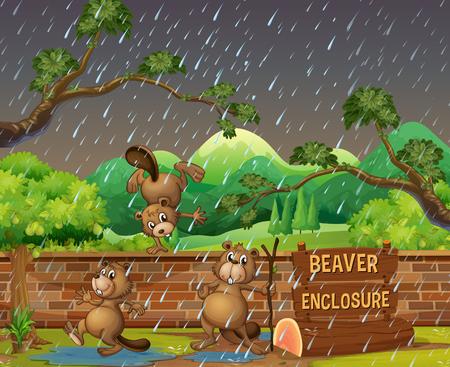 Three beavers in the zoo on the rainny day illustration Stock Illustratie