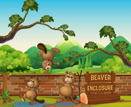 Beavers in the open zoo illustration Stock Illustratie