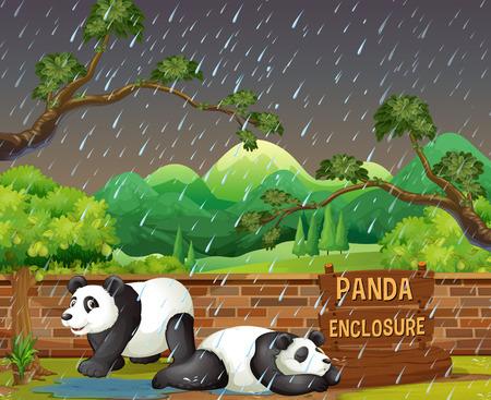Panda in Zoo in Raining Night illustration 向量圖像