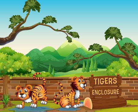 Zoo scene with tigers at day time illustration Ilustração