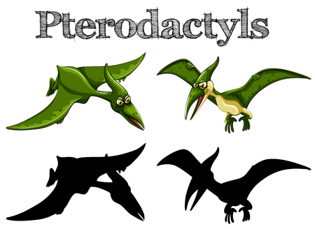 Pterodactyls in green and silhouette illustration Illustration