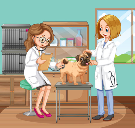 Veterinarian Doctors Helping a Dog illustration