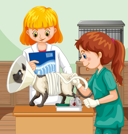 Veterinarian Doctor Helping a Cat illustration