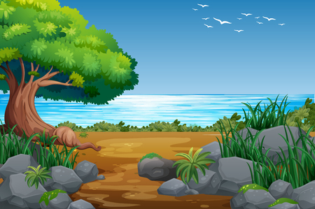 Riverside View with Forest Landscape illustration