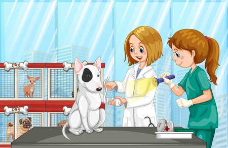 Vet Helping a Dog at Clinic illustration