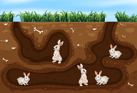 Famille de lapin vivant dans l'illustration du trou