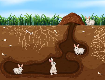 Famille de lapin vivant dans l & # 39; illustration du trou