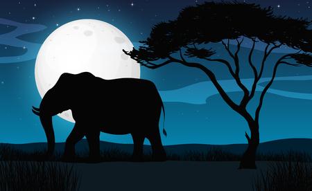 Silhouette Elephant in Savana Night illustration