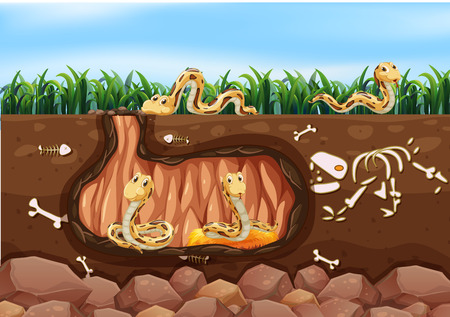 A Snake Family Living Underground illustration Vectores