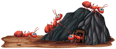 A Ants Family Living in Hole illustration