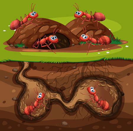 A Group of Working Ants in Hole illustration Vectores