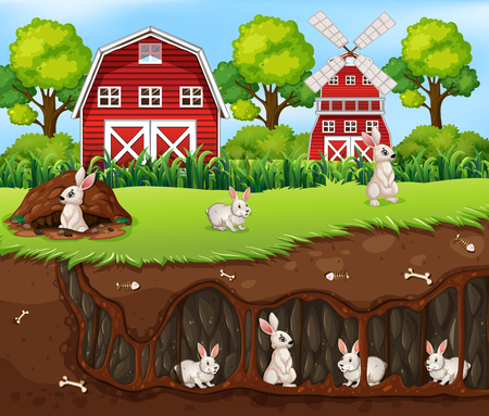 Rabbit House Underground the Farm illustration Illustration