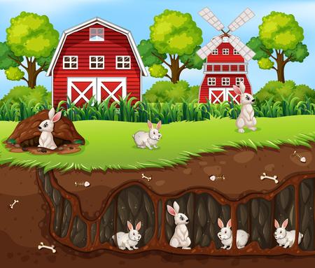 Rabbit House Underground the Farm illustration Illustration