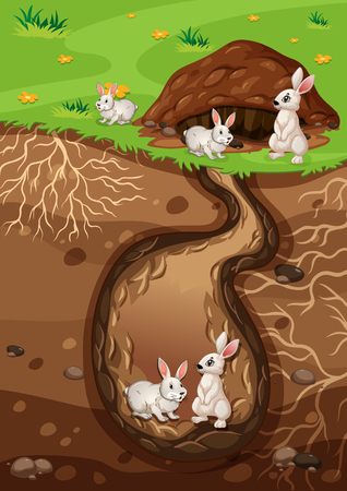 A Rabbit Family Living in Hole illustration