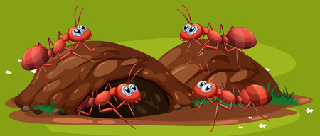A Group of Working Ants illustration Illustration
