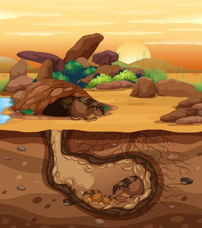 A Guinea Pig Family Living Underground illustration