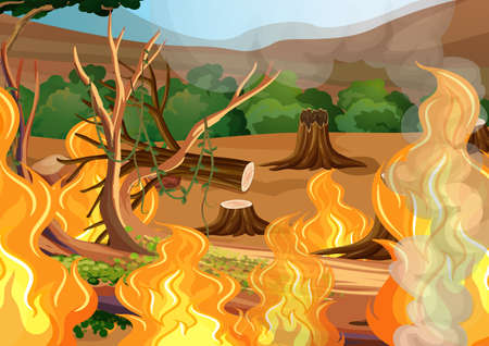 A Forest Wildfire Disaster illustration