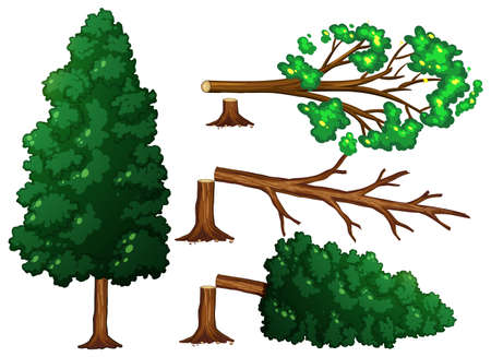 A Set of Tree Being Cut illustration