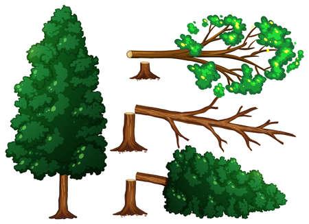 Un conjunto de ilustración de corte de árbol Ilustración de vector