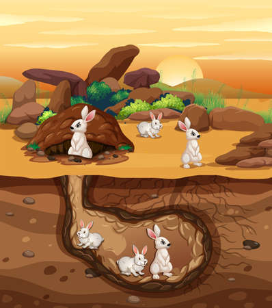 Rabbits Digging a Hole illustration