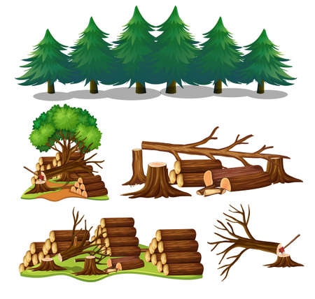 A Set of Wood Element illustration