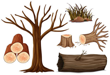 A Set of Wood illustration