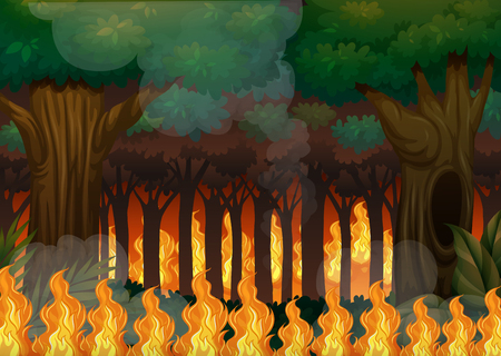 A wildfire in forest illustration Illustration