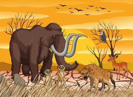 Wild animals at dry forest  illustration Illustration