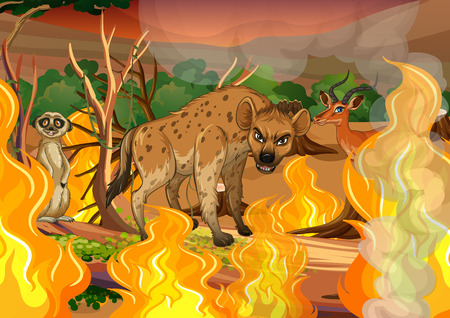 Wild animal in wildfire forest illustration