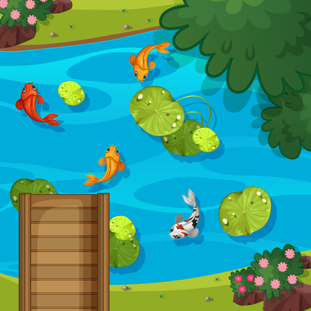 Top view of pond illustration
