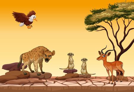 Wild animals in dry forest illustration