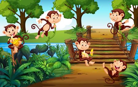 A group of monkey  at the park illustration Illustration
