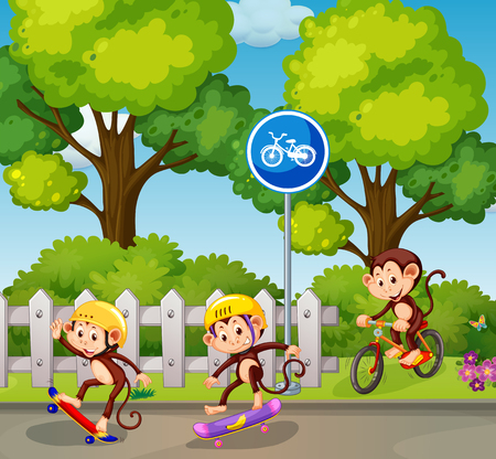 Monkey riding a bicycle and skateboard illustration