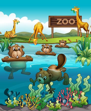 Animal en la ilustración del zoológico Ilustración de vector