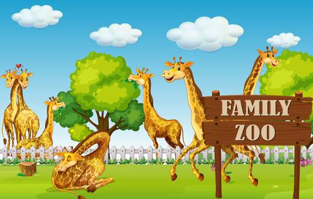 A giraffe family in the zoo illustration Imagens - 110347661