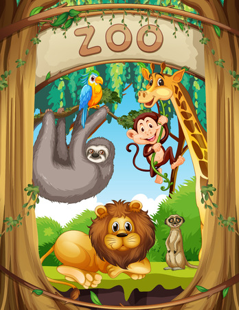 Wild animals in the zoo illustration Stock Vector - 110347765
