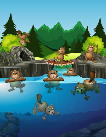 Beaver living in the lake illustration